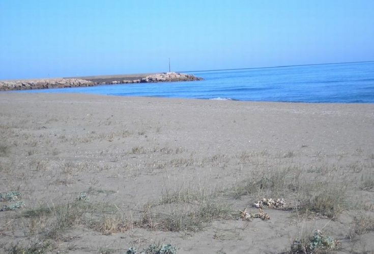 sole-estate-costa-rei-069